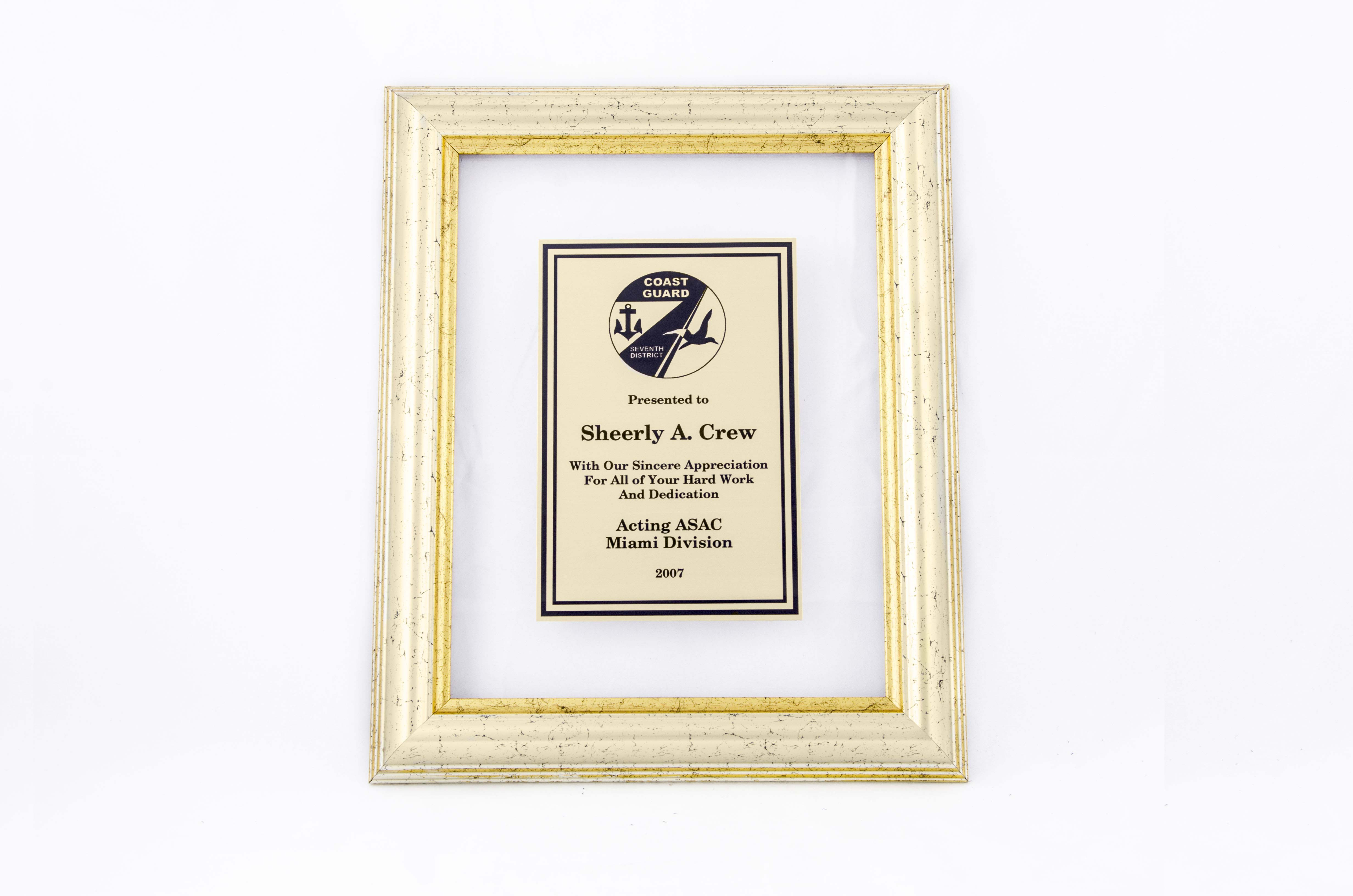 Clear frame plaque - CF Series