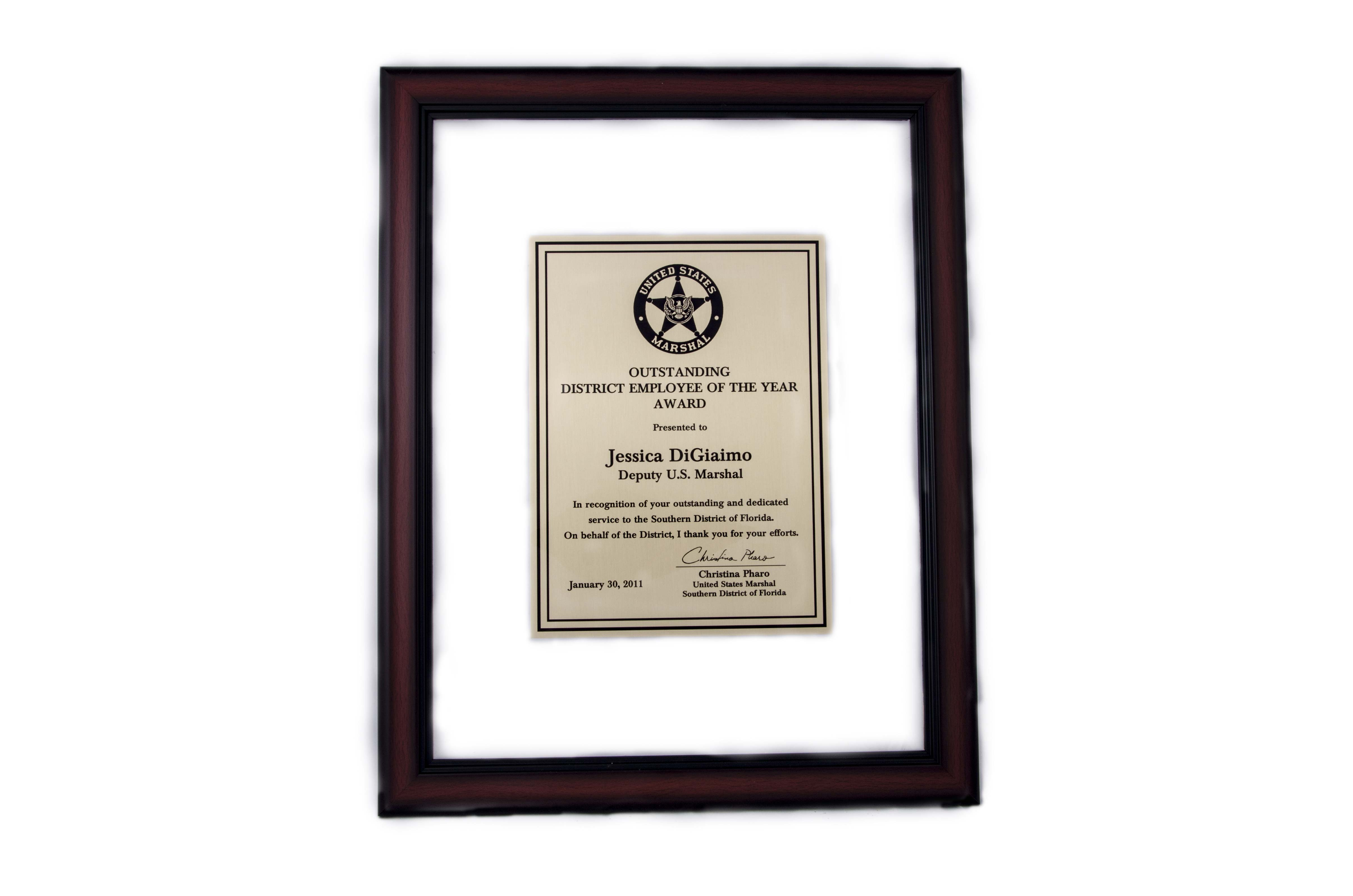 Clear Frame Plaque Mcf Series Michelson Trophies